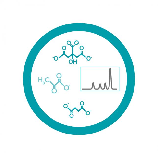 Organic Acid Analysis - UHPLC based method - FAF