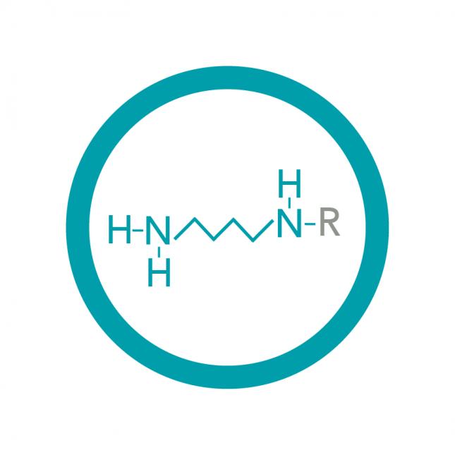 Polyamine Analysis