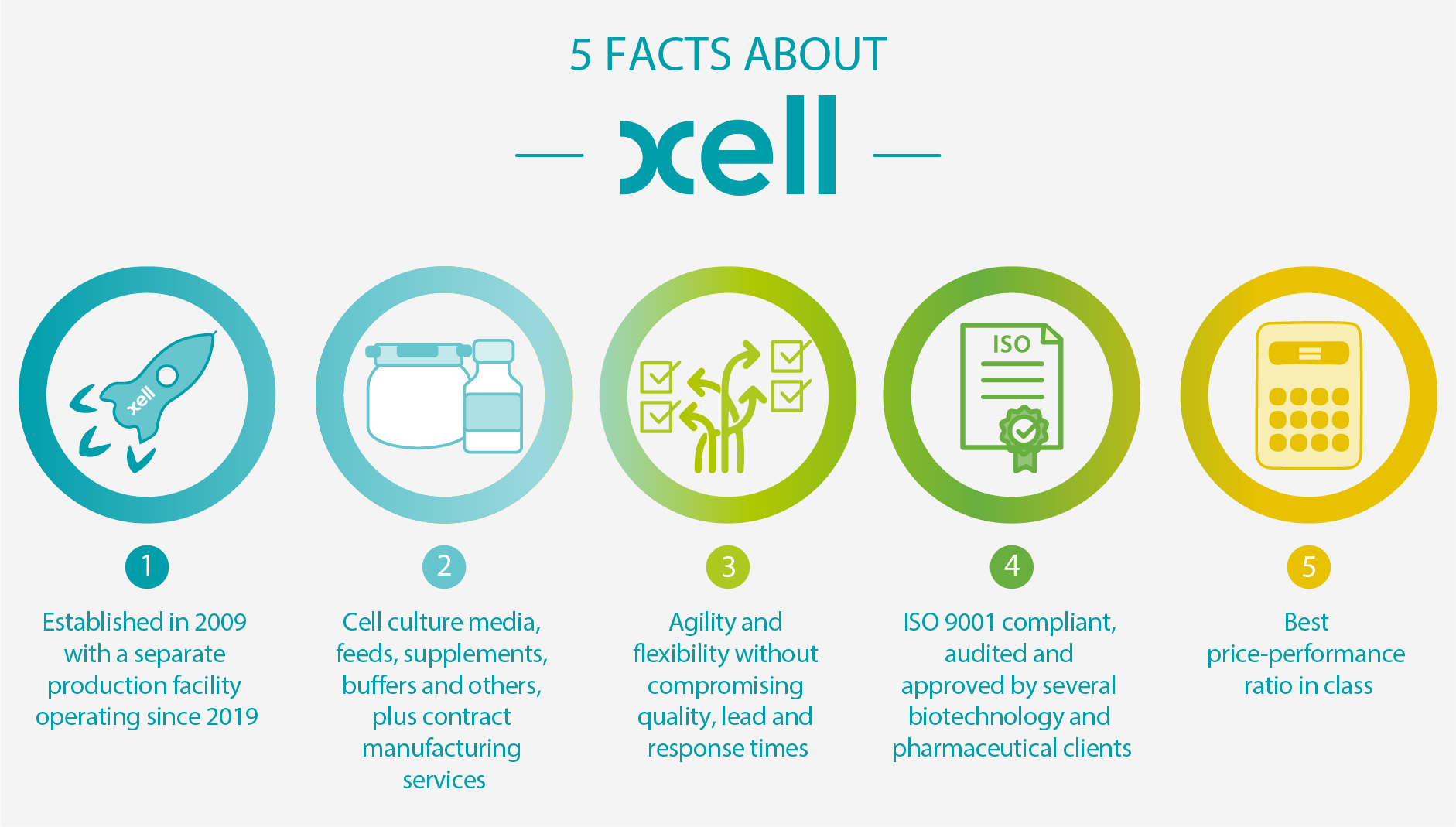 5 facts about Xell