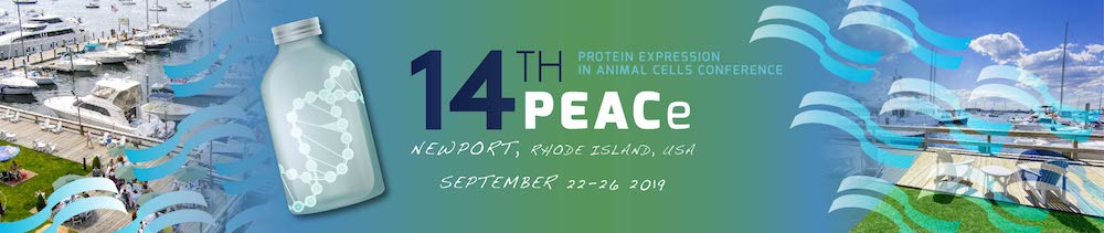 PEACe Conference 2019 in Newport