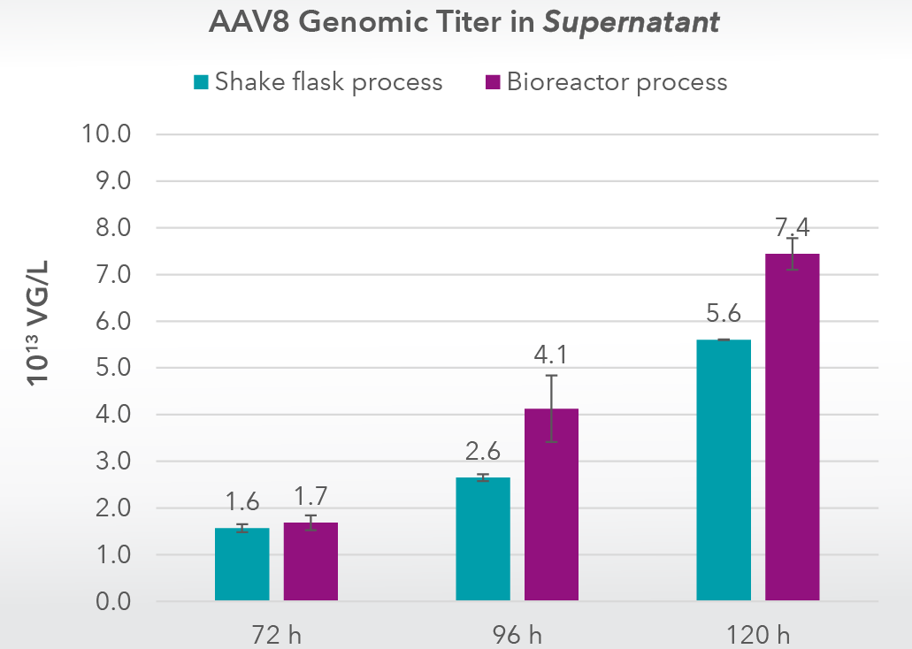 Comparison of AAV8 genomic titers in supernatants of HEK293 cells cultivated in Xell's HEK ViP NX medium-01
