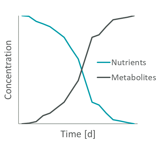Spent Media Analysis - Exemplary change of nutrients and metabolites